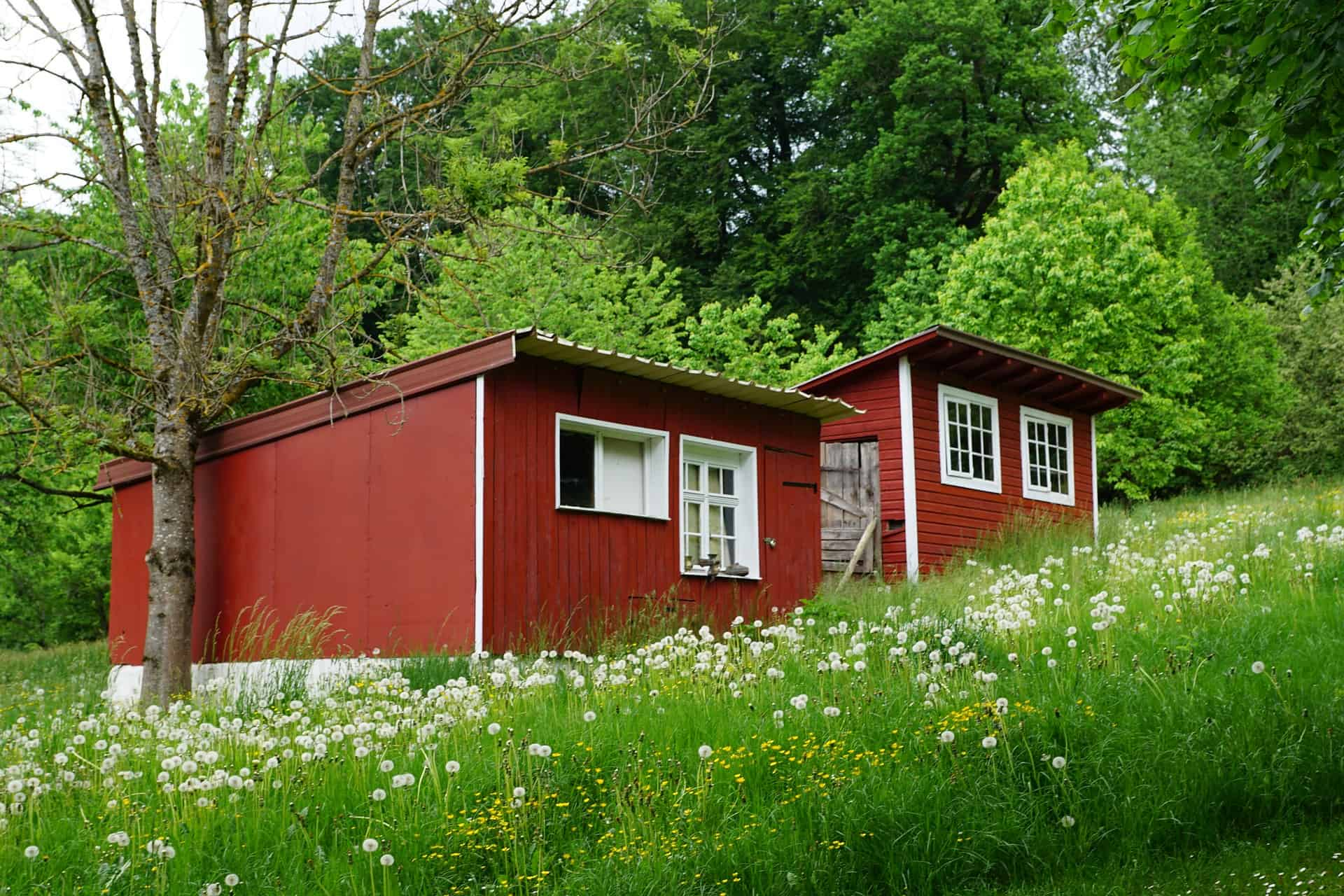 Top Small House Plans For Your Dream Home